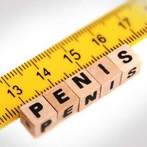 Penis Size Scale