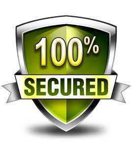 100 P Secure
