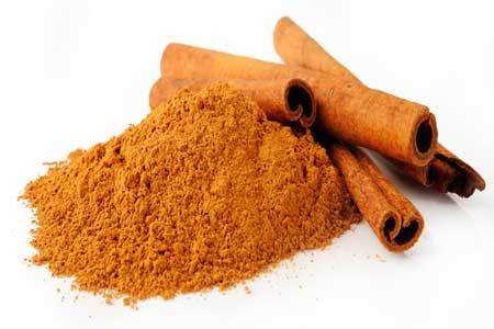 Cinnamon Herb