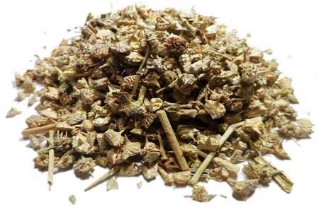 Tribulis Terrestris Herb