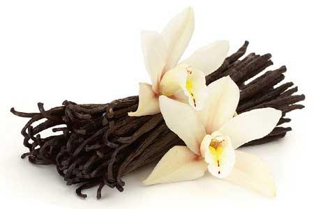 Vanilla Herb