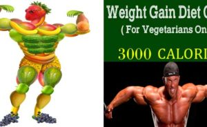 Weight Gain For Vegetarians Banner