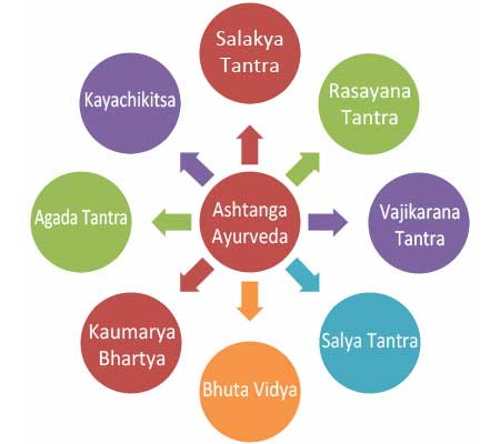 Ayurveda Treatment Methods