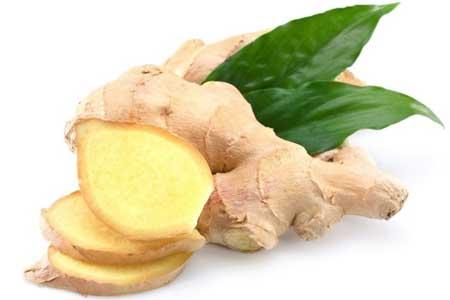 Ginger Herbs