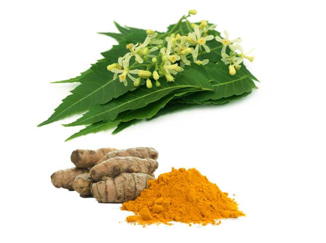 neem turmeric